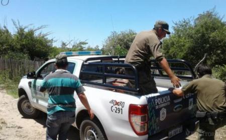 Capturan a un prófugo acusado de abigeato y hurto en Saladas